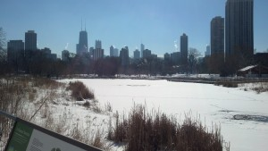 Lincoln Park Feb 3 2014