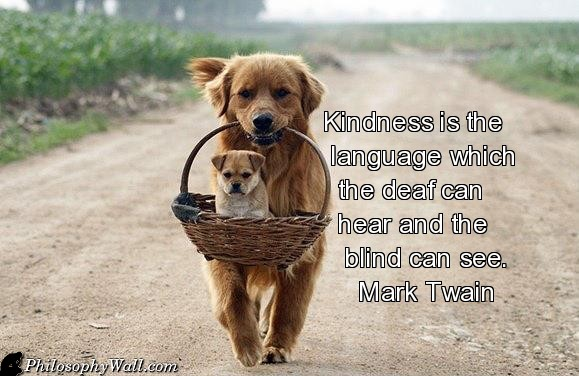kindness 4 quote