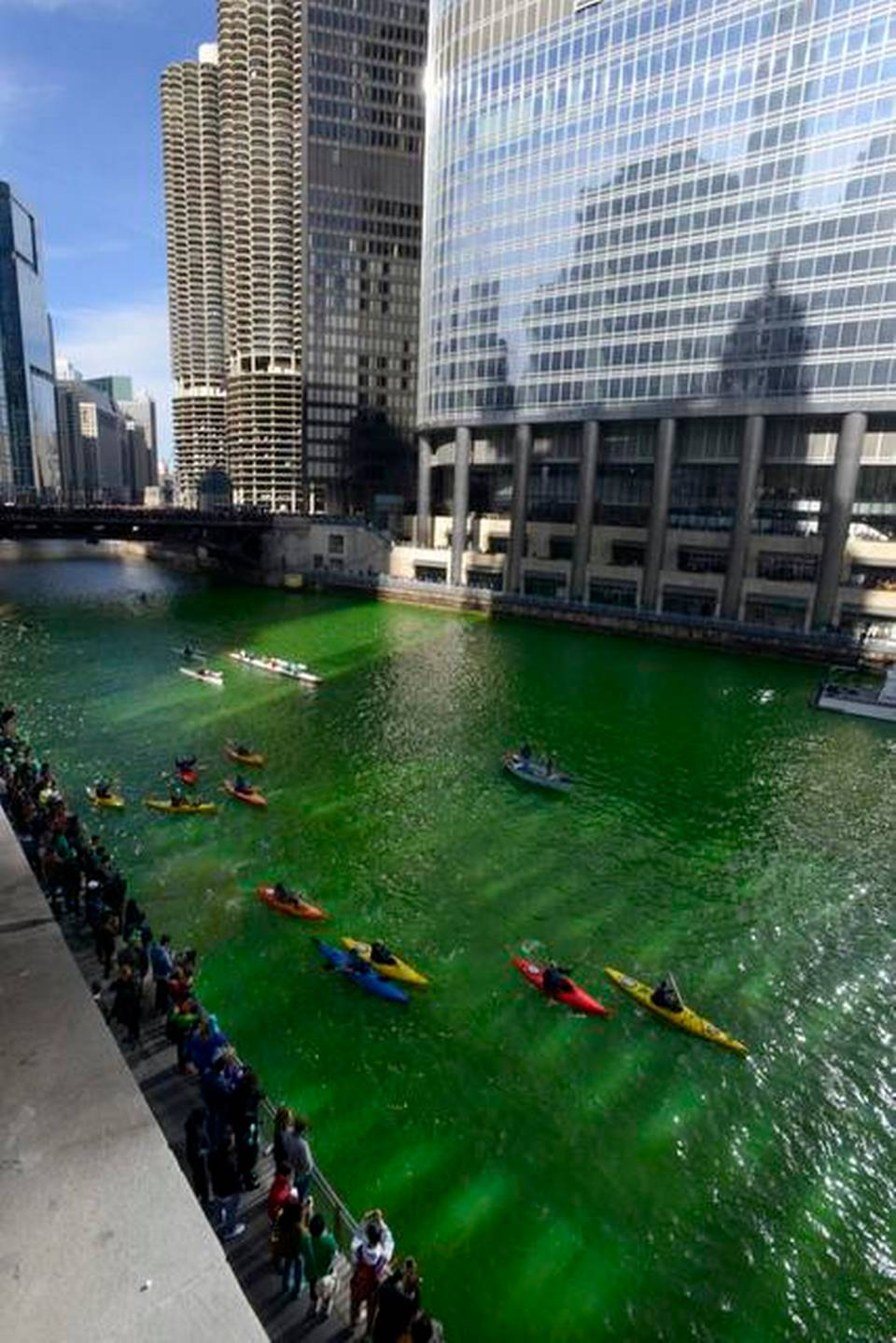 Chicago River Green 2015 3