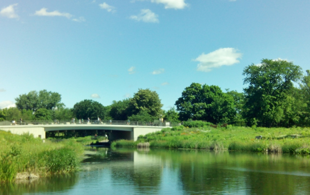 Lincoln Park 3
