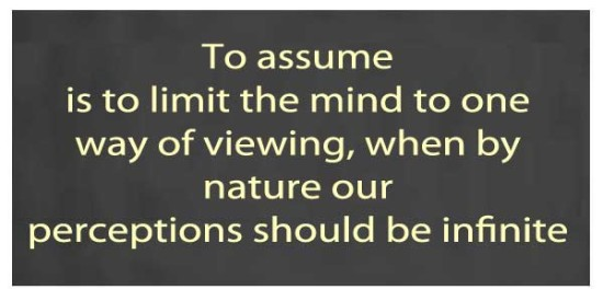 Assumptions Based Upon Perceptions = ??