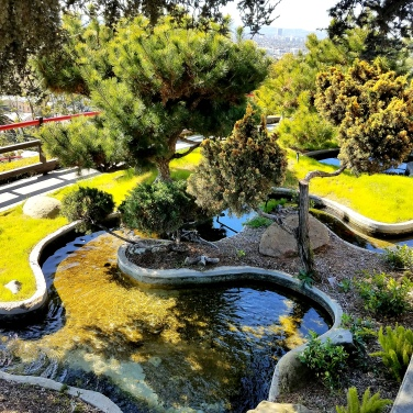 Japanese Gardens Los Angeles March 2018