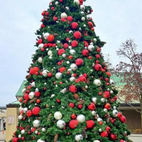 Christmas Tree Old Orchard Mall Nov 19 2018
